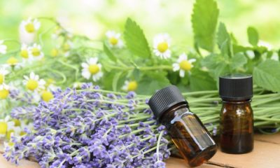 Essential Oils Benefits for You